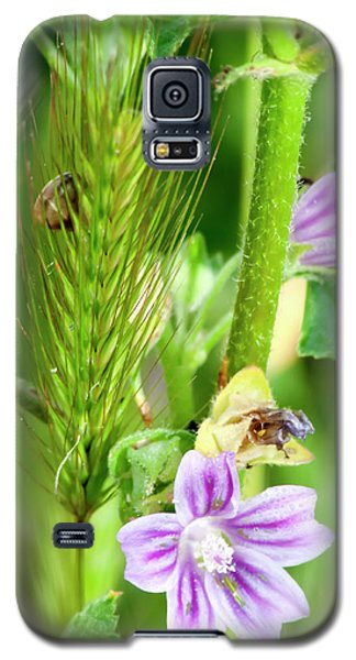 Galaxy S5 Case featuring the photograph Natural Bouquet by Pedro Cardona