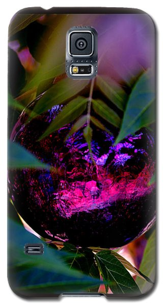 Galaxy S5 Case featuring the photograph Natural Transcendence by Susanne Still