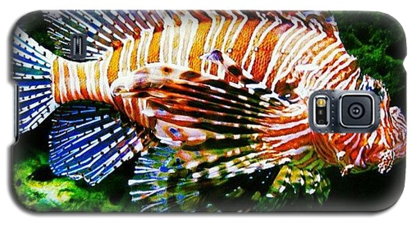Cause Galaxy S5 Case - #nature #nature_seekers #water by Susan McGurl