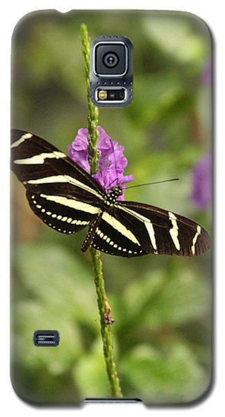 Natures Art Galaxy S5 Case