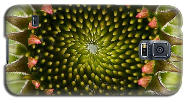 Nature's Geometry Galaxy S5 Case by Carrie Cranwill