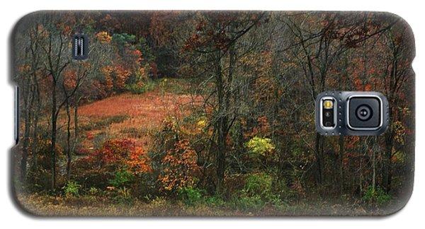 Nature's Paints Galaxy S5 Case by Vilas Malankar