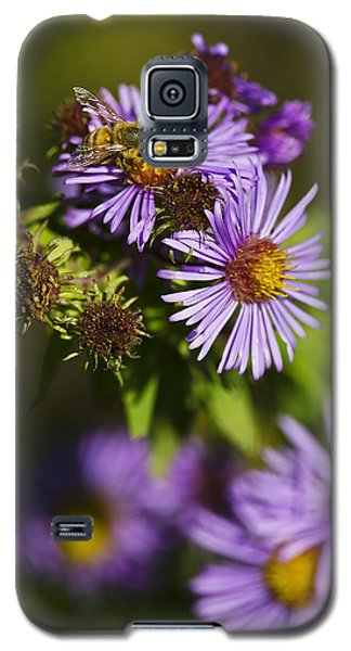 Nectar Gathering Galaxy S5 Case