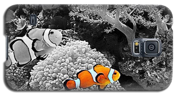 Nemo At Home Galaxy S5 Case by Nick Kloepping