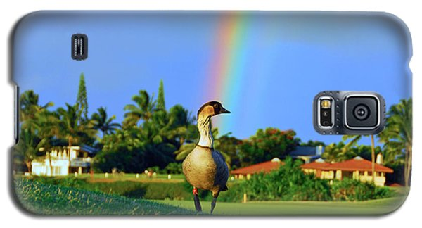 Galaxy S5 Case featuring the photograph Nene At The End Of The Rainbow by Lynn Bauer