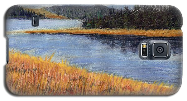 Galaxy S5 Case featuring the painting Nestucca River And Bay  by Chriss Pagani