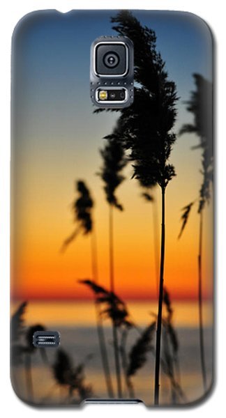 New Day Galaxy S5 Case