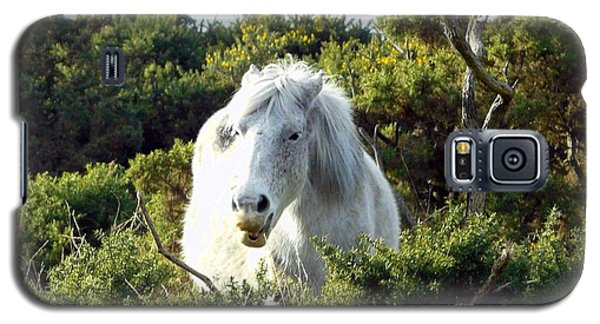 Galaxy S5 Case featuring the photograph New Forest Pony by Rdr Creative