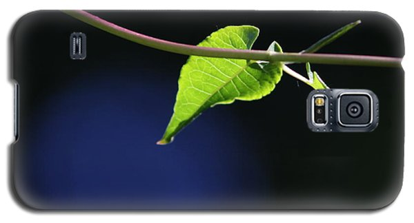 Galaxy S5 Case featuring the photograph New Growth by Cathie Douglas