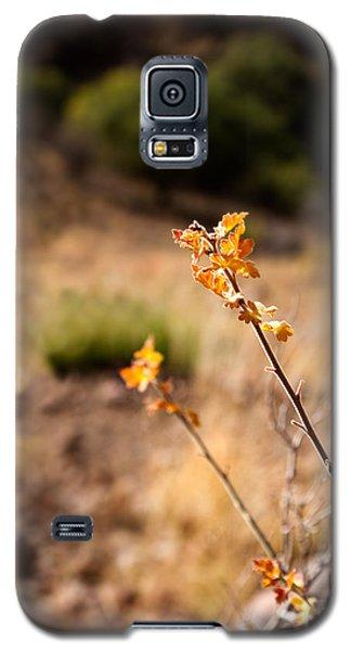 New Growth Galaxy S5 Case