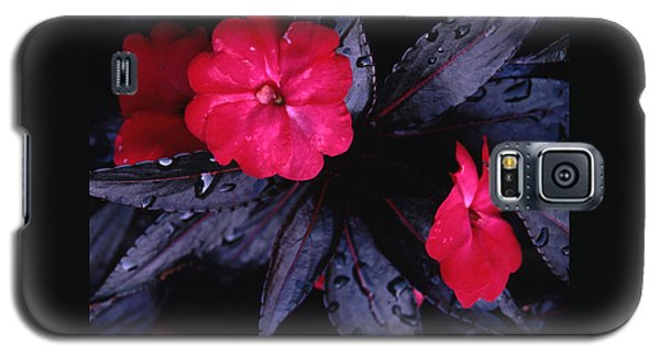 Galaxy S5 Case featuring the photograph New Guinea Impatiens by Tom Wurl