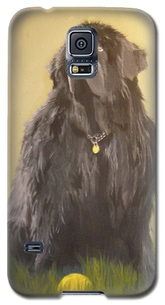 Newfoundland With Ball Galaxy S5 Case