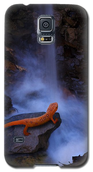 Newt Falls Galaxy S5 Case by Ron Jones