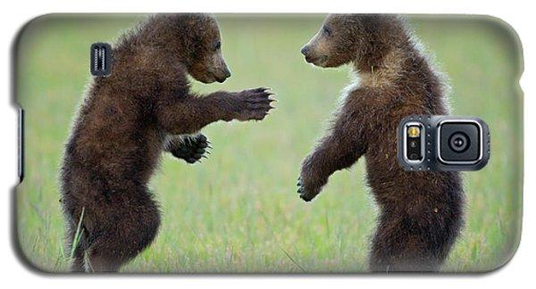 Ninja Cubs 2 Galaxy S5 Case