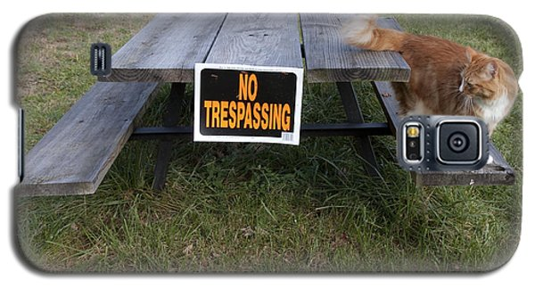 No Trespassing Galaxy S5 Case by Jeannette Hunt