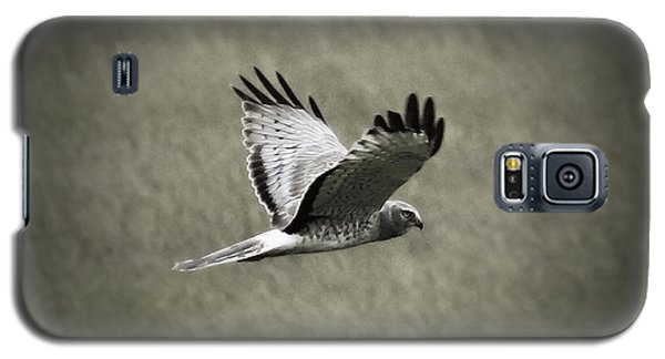 Northern Harrier Galaxy S5 Case