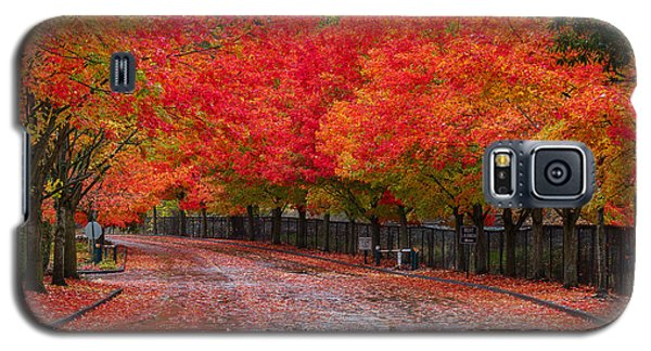 Galaxy S5 Case featuring the photograph Northwest Autumn by Ken Stanback