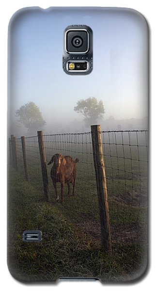 Galaxy S5 Case featuring the photograph Nubian Goat by Lynn Palmer