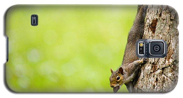 Nut Job Galaxy S5 Case