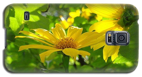 Oahu Sunshine Galaxy S5 Case