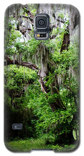 Oak And Moss Galaxy S5 Case