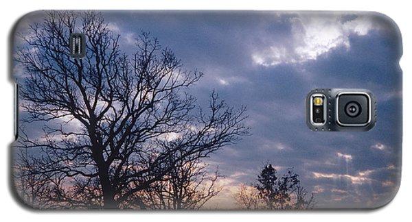 Oak In Sunset Galaxy S5 Case