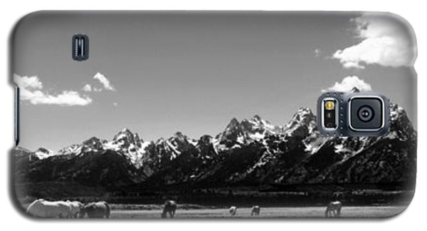 Galaxy S5 Case featuring the photograph Oblivious by Dan Wells