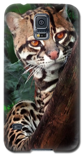 Ocelot Lookout Galaxy S5 Case