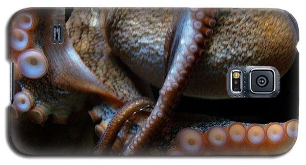 Octopus 1  Galaxy S5 Case