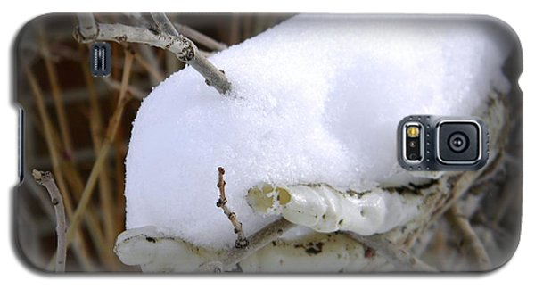 Galaxy S5 Case featuring the photograph Old Man Winter's Hand by Michelle Frizzell-Thompson