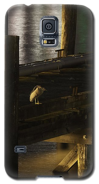 On The Dock Galaxy S5 Case