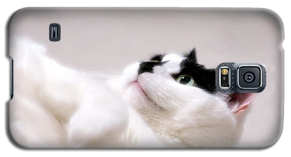 One Belly Rub Please Galaxy S5 Case by JM Photography