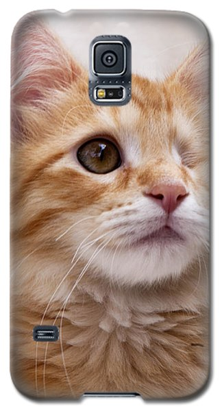 One Eye Willie 2 Galaxy S5 Case