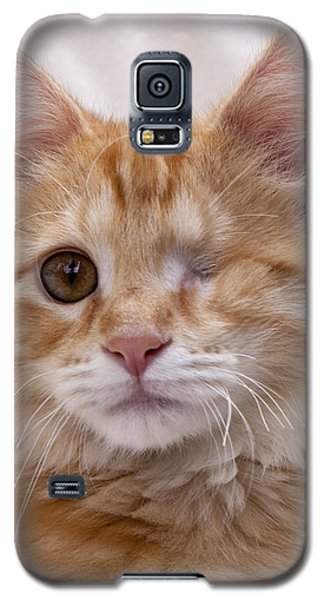 One Eye Willie Galaxy S5 Case
