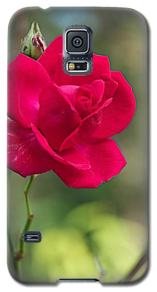 Galaxy S5 Case featuring the photograph One Rose by Joseph Yarbrough
