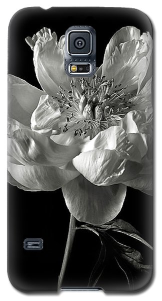 Open Peony In Black And White Galaxy S5 Case