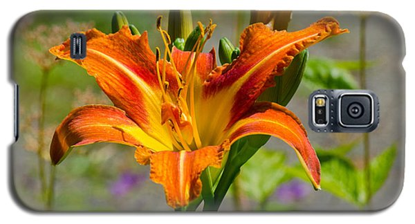 Galaxy S5 Case featuring the photograph Orange Day Lily by Tikvah's Hope