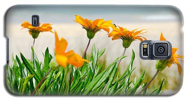 Orange Flowers On The Sunny Ocean Beach. Galaxy S5 Case