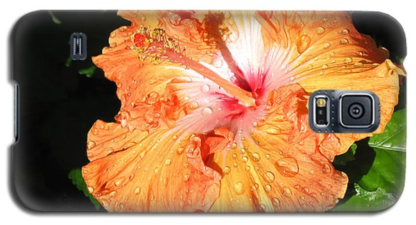 Galaxy S5 Case featuring the photograph Orange Hibiscus After The Rain 1 by Connie Fox