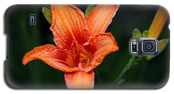 Galaxy S5 Case featuring the photograph Orange Lily by Davandra Cribbie