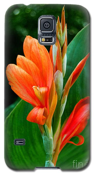 Galaxy S5 Case featuring the photograph Orange by Linda Mesibov