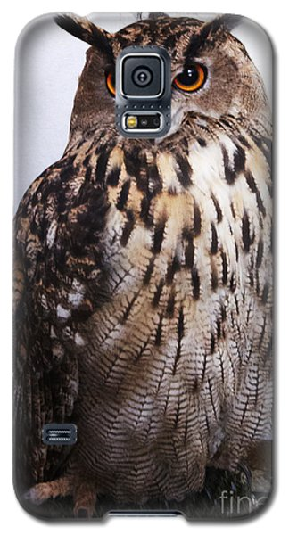 Orange Owl Eyes Galaxy S5 Case