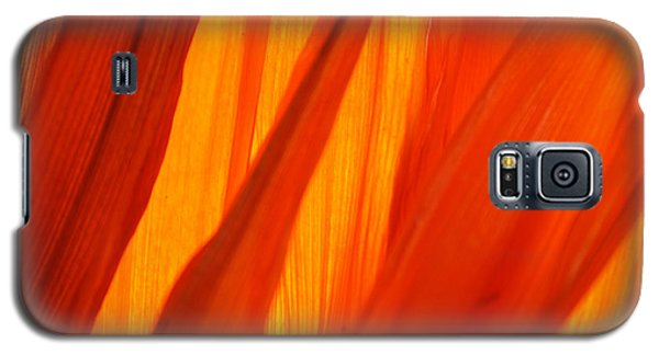 Orange Sunshine Galaxy S5 Case