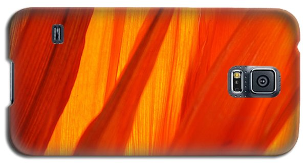 Galaxy S5 Case featuring the photograph Orange Sunshine by Bobby Villapando