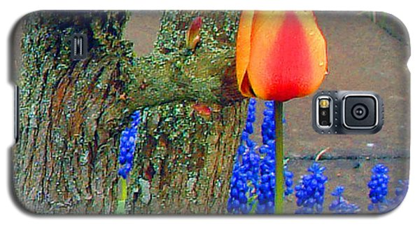 Galaxy S5 Case featuring the photograph Orange Tulip And Bluebells by Richard James Digance