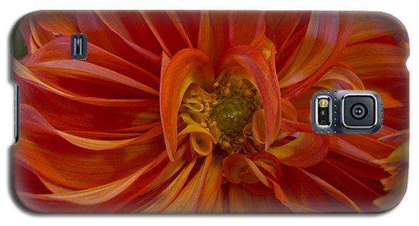 Orange You Happy Galaxy S5 Case