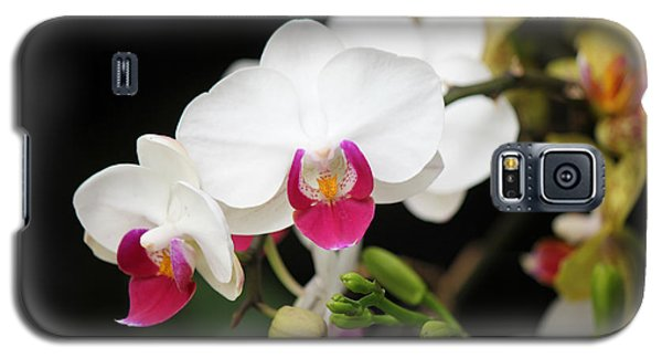 Orchid Buds Galaxy S5 Case