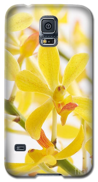 Orchid Bunch Galaxy S5 Case
