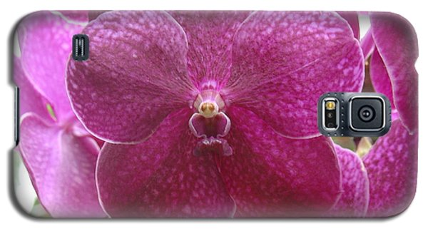 Orchid Cluster Galaxy S5 Case