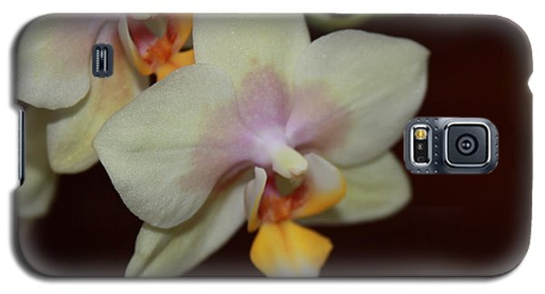 Galaxy S5 Case featuring the photograph Orchid I by Kelly Hazel